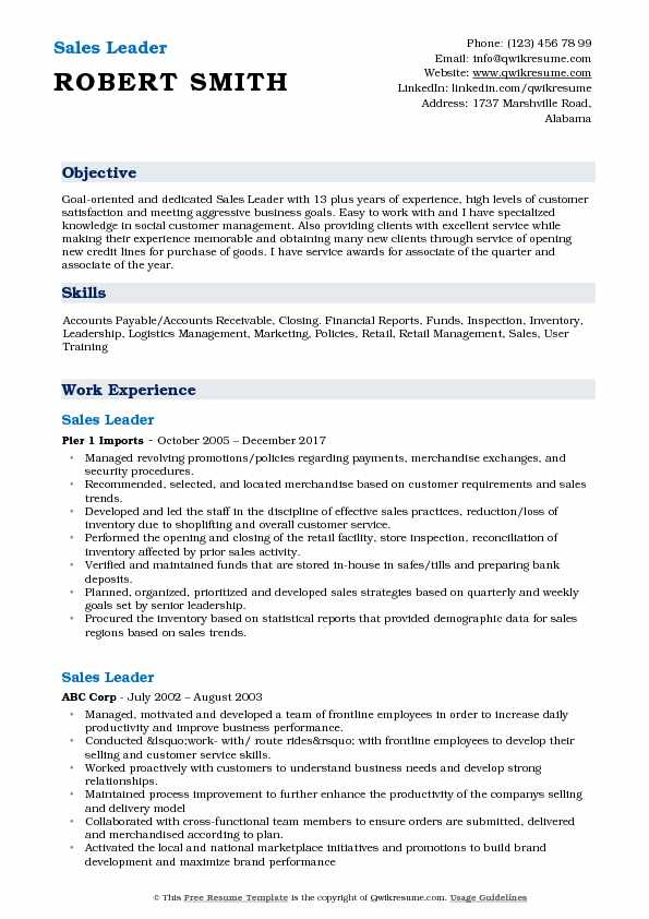 Sales Leader Resume Example