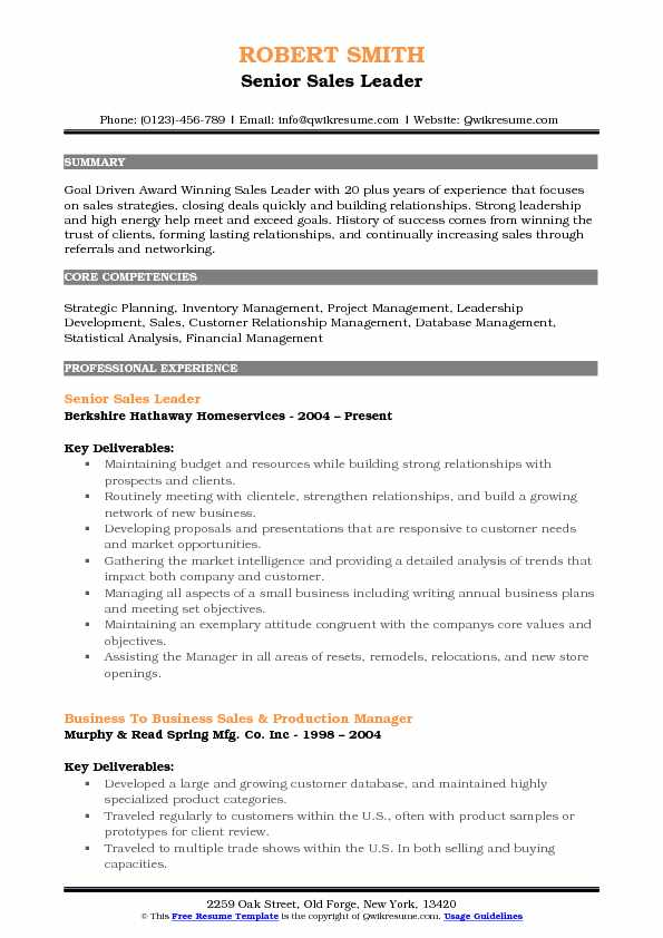 Senior Sales Leader Resume Example