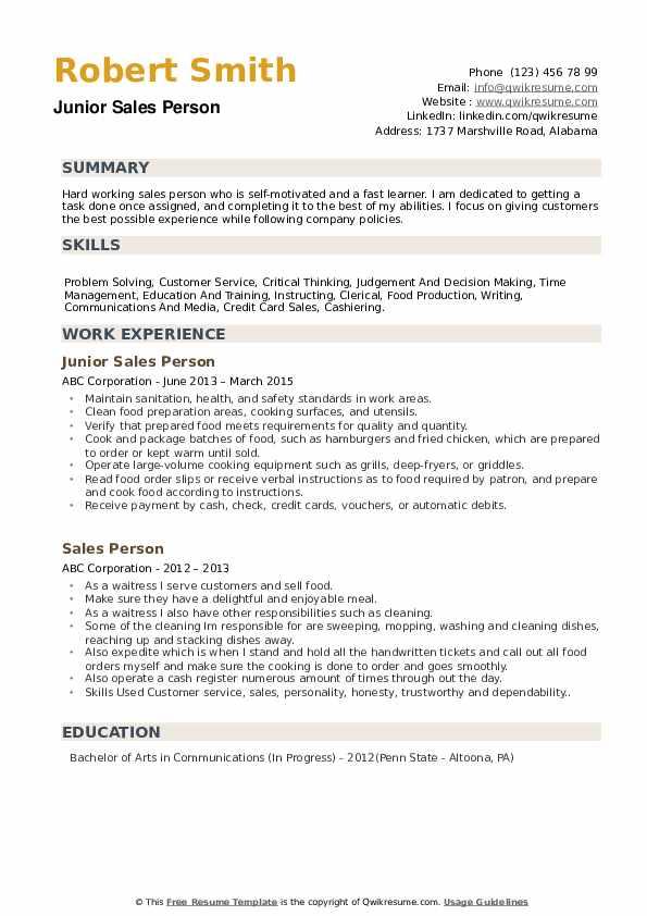 Junior Sales Person Resume Model