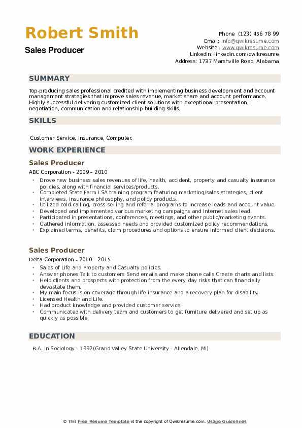 Sales Producer Resume example
