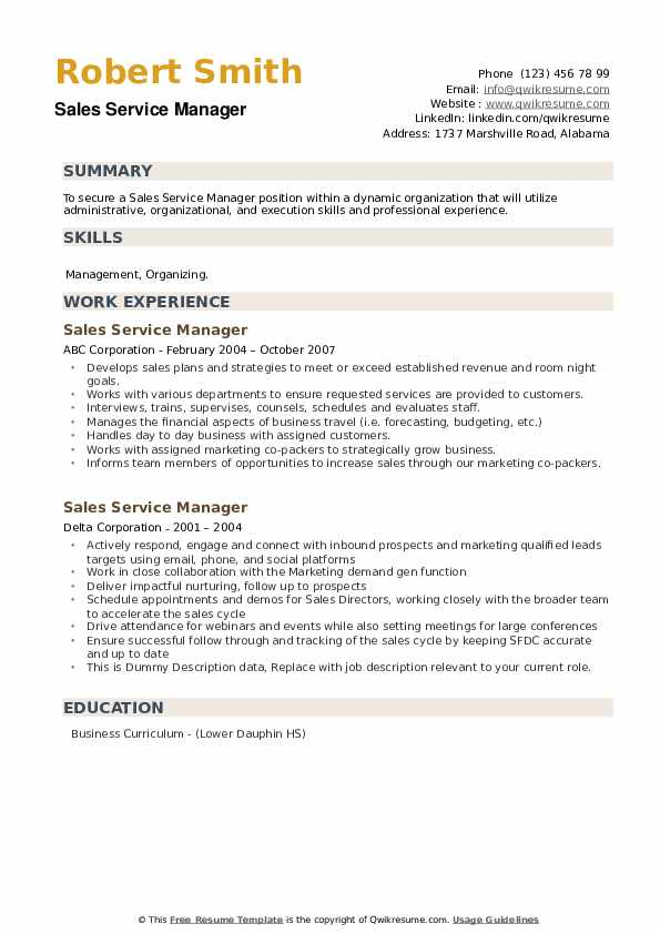 Sales Service Manager Resume example