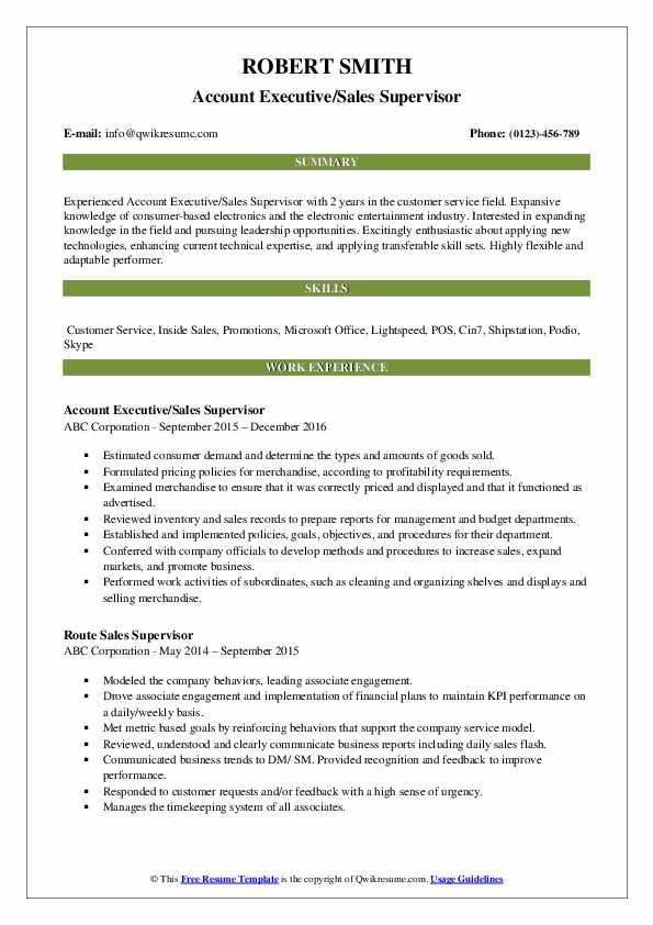 Account Executive/Sales Supervisor Resume Model