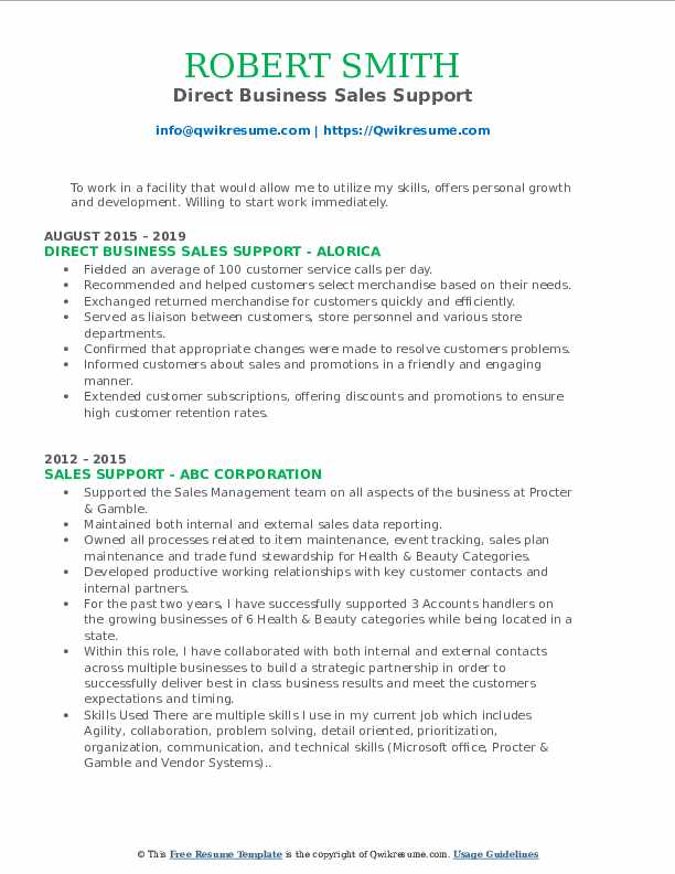 Direct Business Sales Support Resume Template