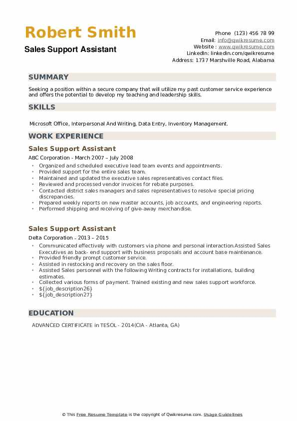 Sales Support Assistant Resume example