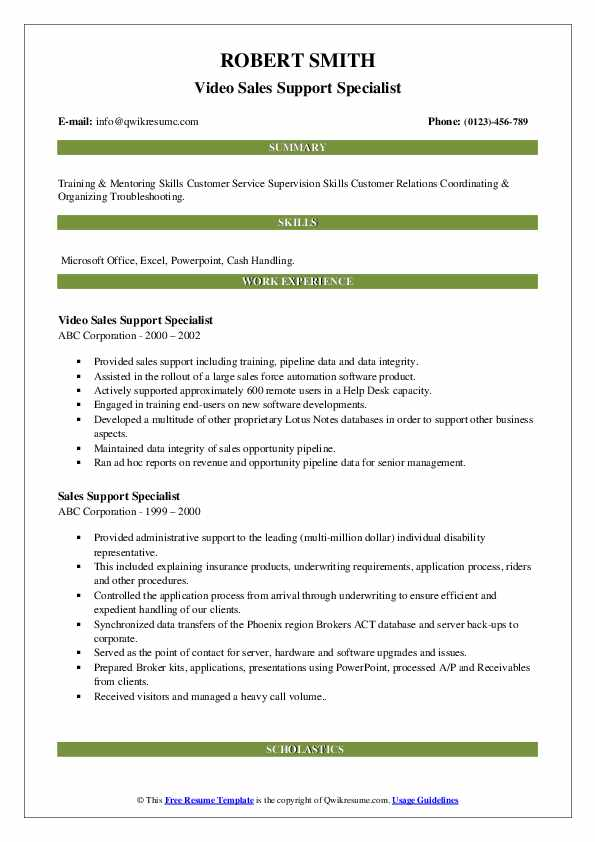 Video Sales Support Specialist Resume Template