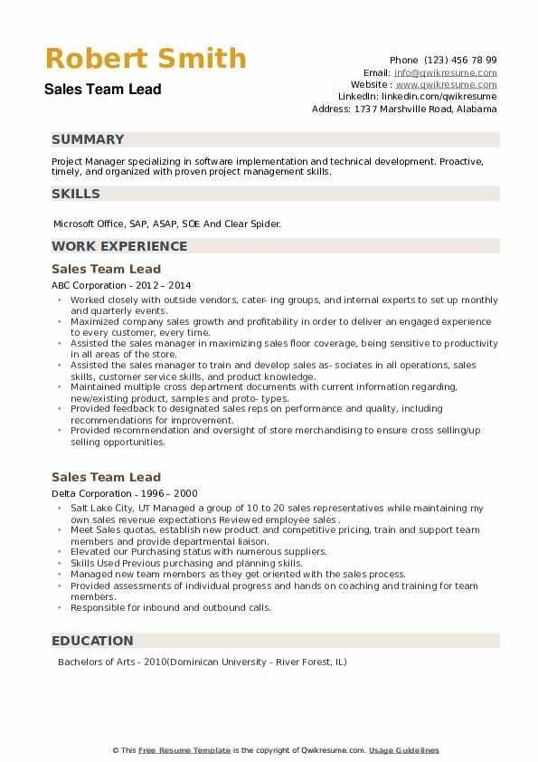 Sales Team Lead Resume example