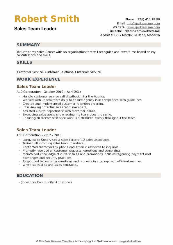 Sales Team Leader Resume example