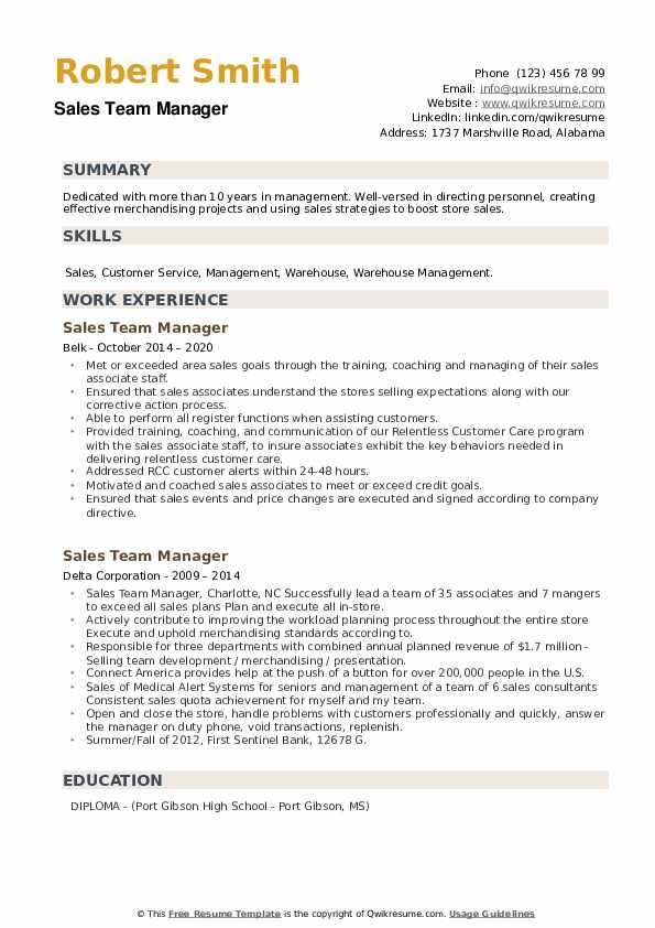 Sales Team Manager Resume example