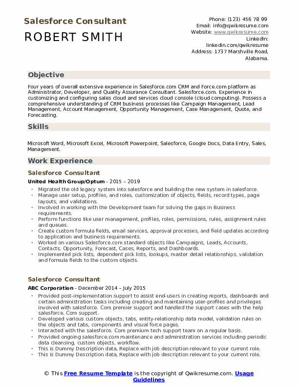 Salesforce Consultant Resume example