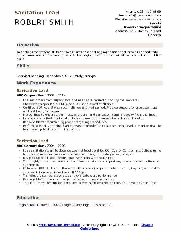 Sanitation Lead Resume example