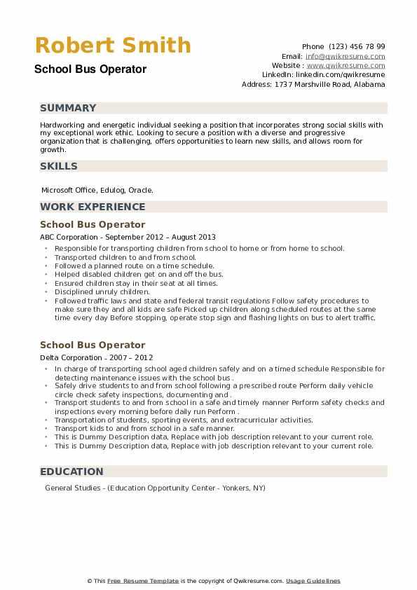School Bus Operator Resume example