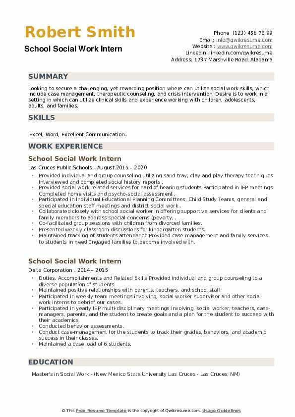 School Social Work Intern Resume example
