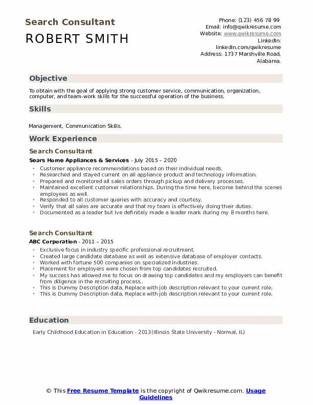 Search Consultant Resume example