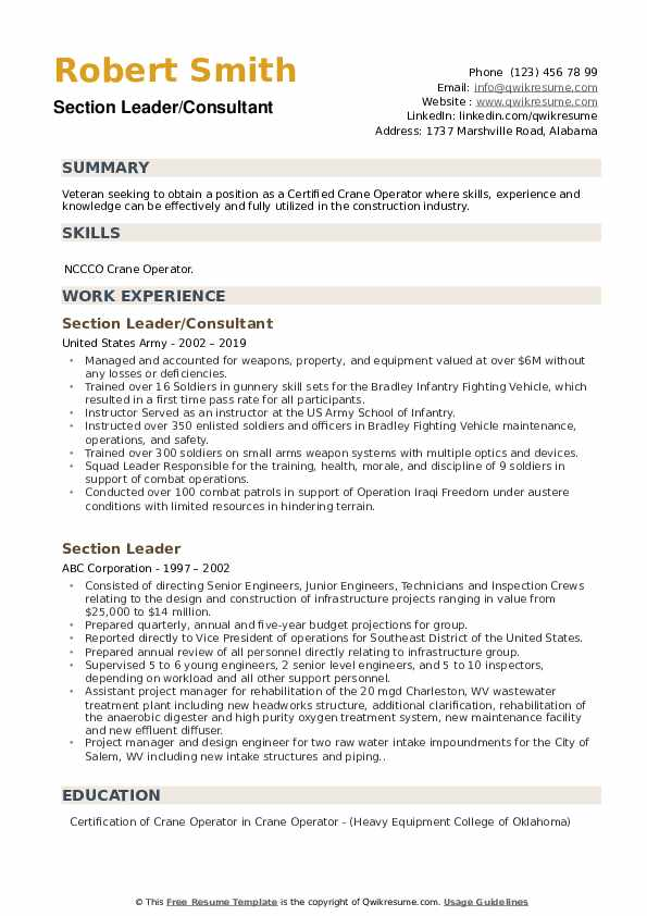 Section Leader/Consultant  Resume Model
