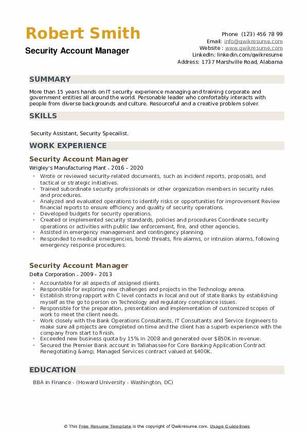 Security Account Manager Resume example