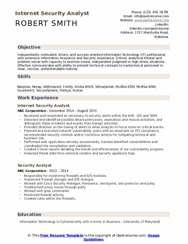 Internet Security Analyst Resume Template