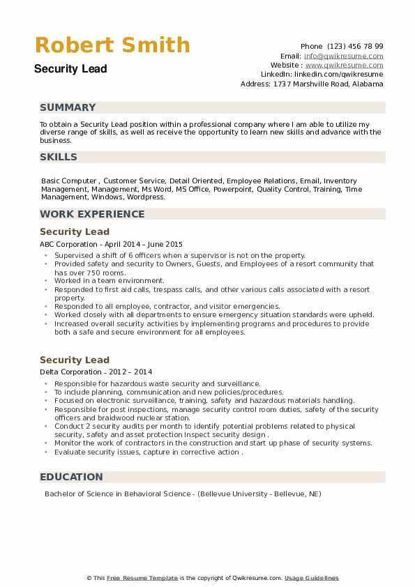 Security Lead Resume example