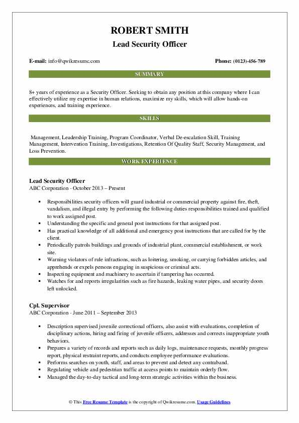 Lead Security Officer Resume Example