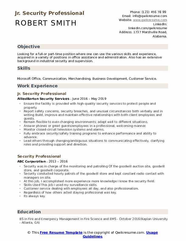 Jr. Security Professional Resume Model