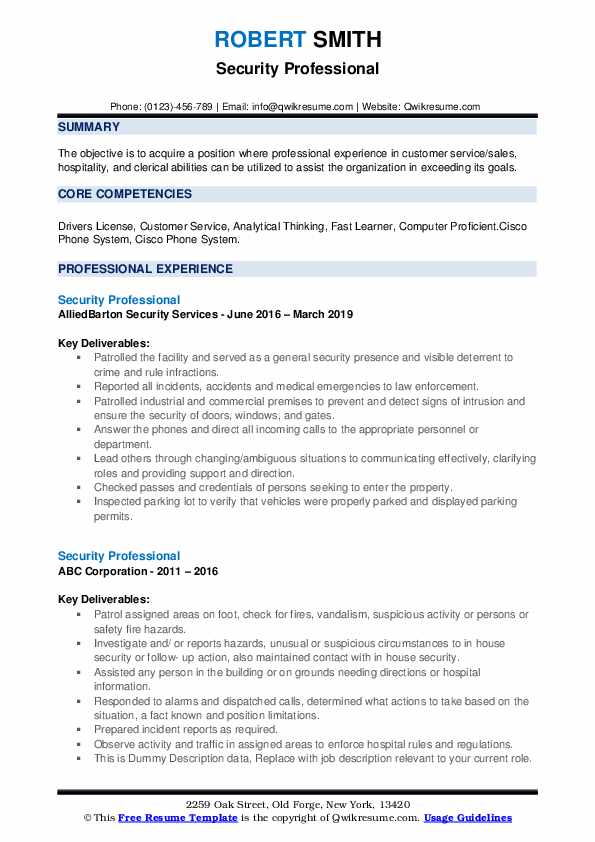 Security Professional Resume example
