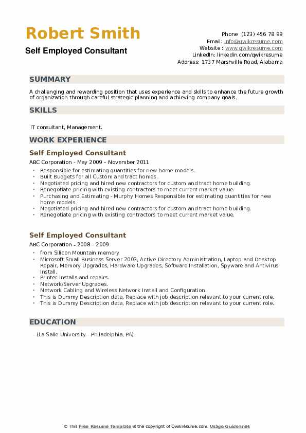 Self Employed Consultant Resume example