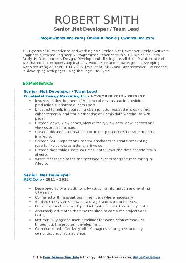 Senior .Net Developer / Team Lead Resume Format