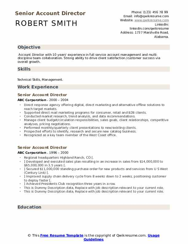 Senior Account Director Resume example