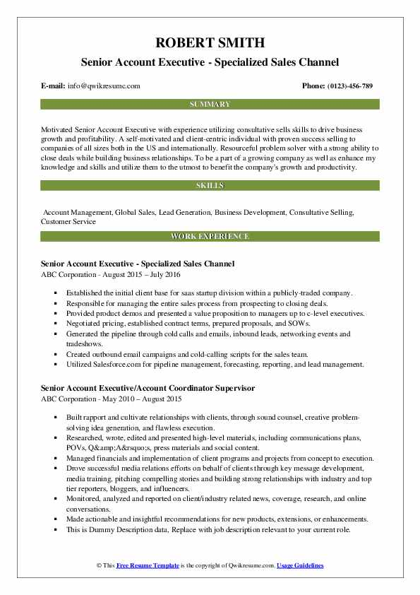 Senior Account Executive - Specialized Sales Channel Resume Sample