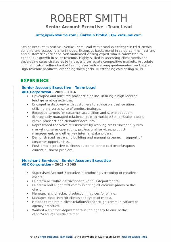 Senior Account Executive - Team Lead Resume Sample