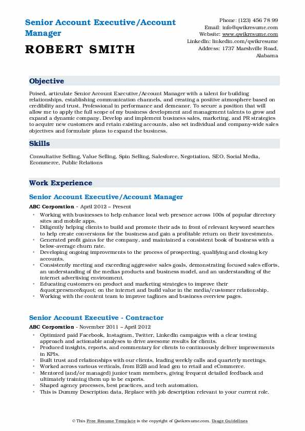Senior Account Executive/Account Manager Resume Example