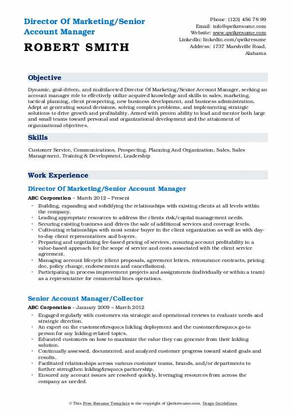 Director Of Marketing/Senior Account Manager Resume Model