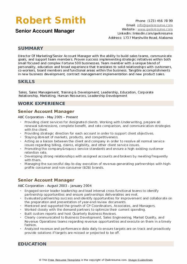 Senior Account Manager Resume example