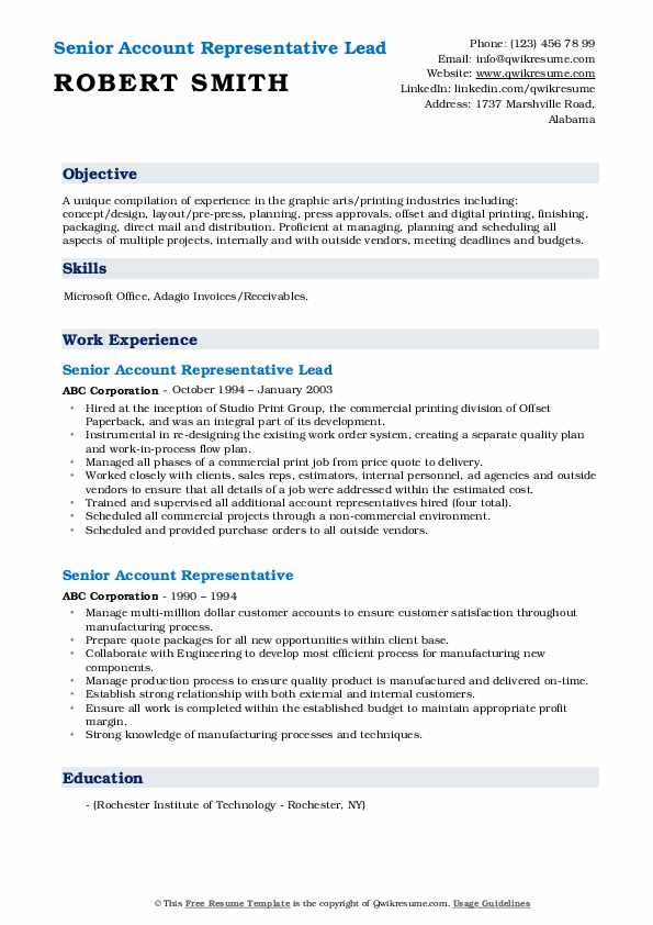 Senior Account Representative Lead Resume Format