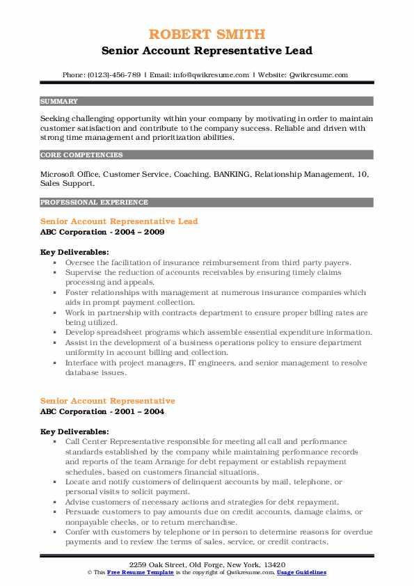 Senior Account Representative Lead Resume Sample