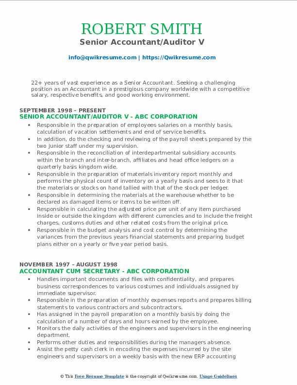 Senior Accountant/Auditor V Resume Example