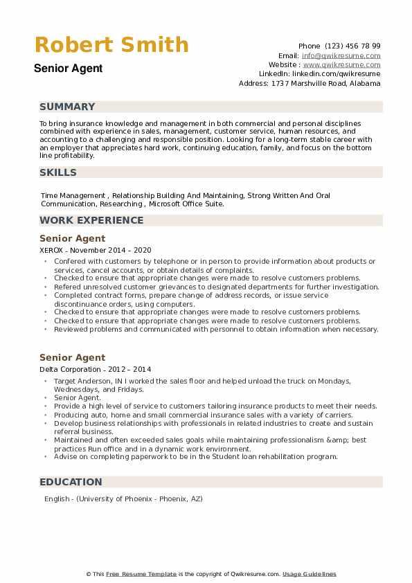 Senior Agent Resume example