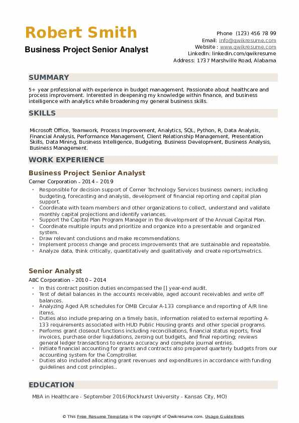 Business Project Senior Analyst Resume Template