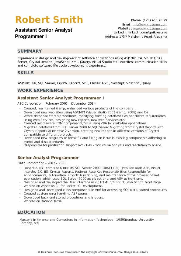 Senior Analyst Programmer Resume example