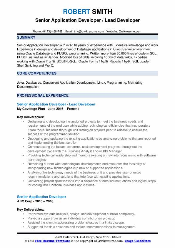 Senior Application Developer / Lead Developer Resume Format