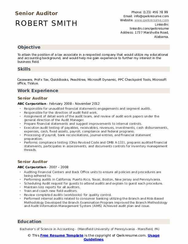 Senior Auditor Resume Example