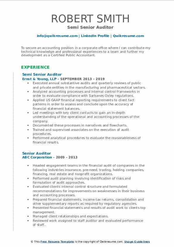 senior auditor resume samples