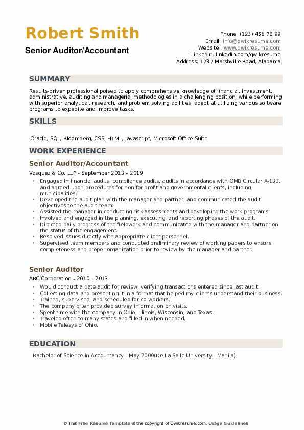 Senior Auditor/Accountant Resume Model