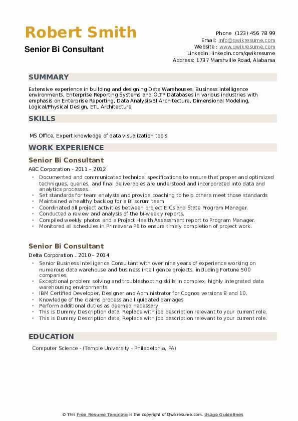 Senior Bi Consultant Resume example