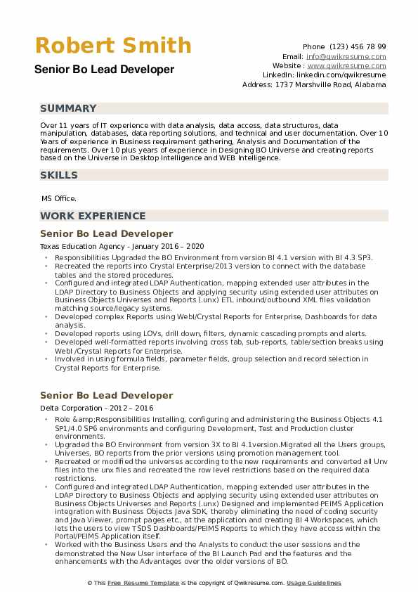 Senior BO Lead Developer Resume example