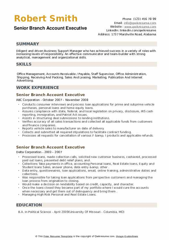 Senior Branch Account Executive Resume example