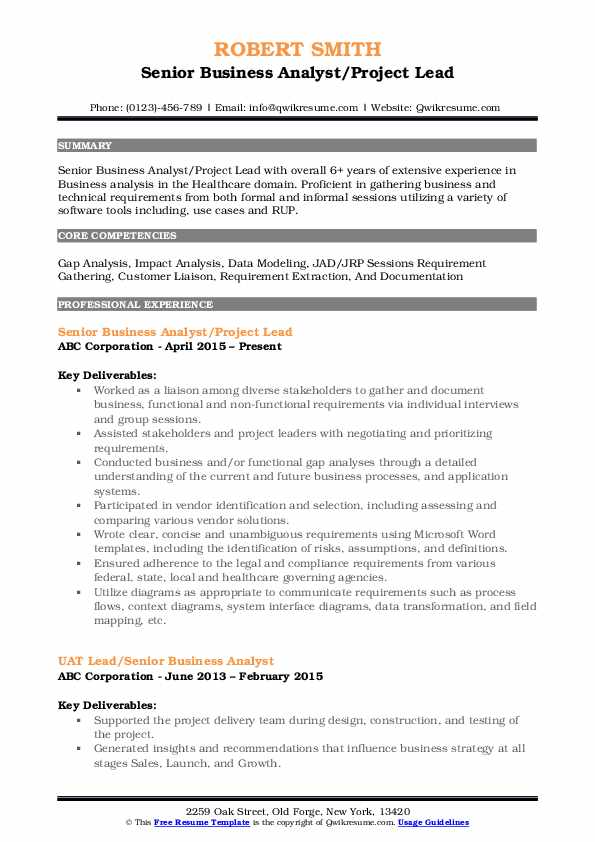 Senior Business Analyst/Project Lead Resume Template