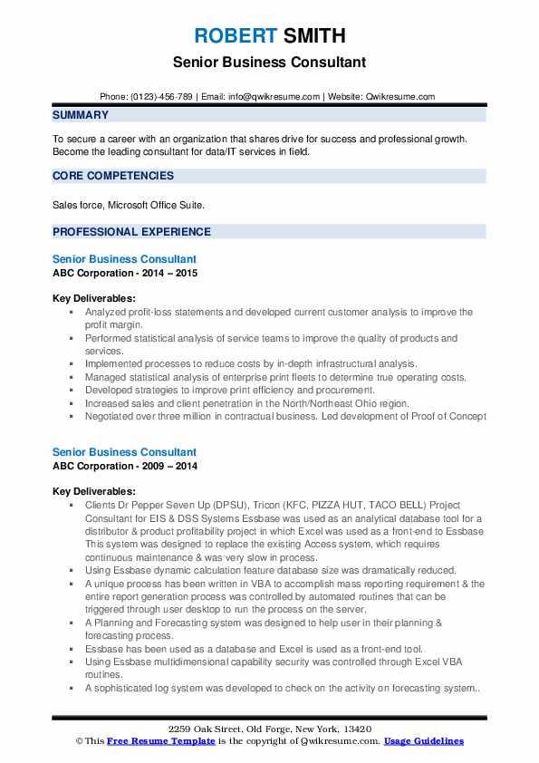Senior Business Consultant Resume example