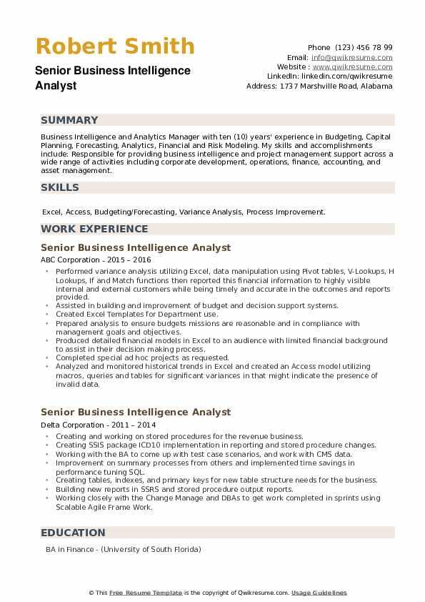 Senior Business Intelligence Analyst Resume example