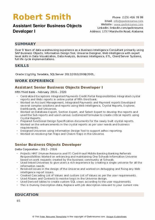 Senior Business Objects Developer Resume example