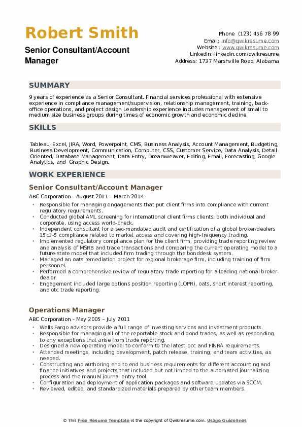 Senior Consultant Resume example